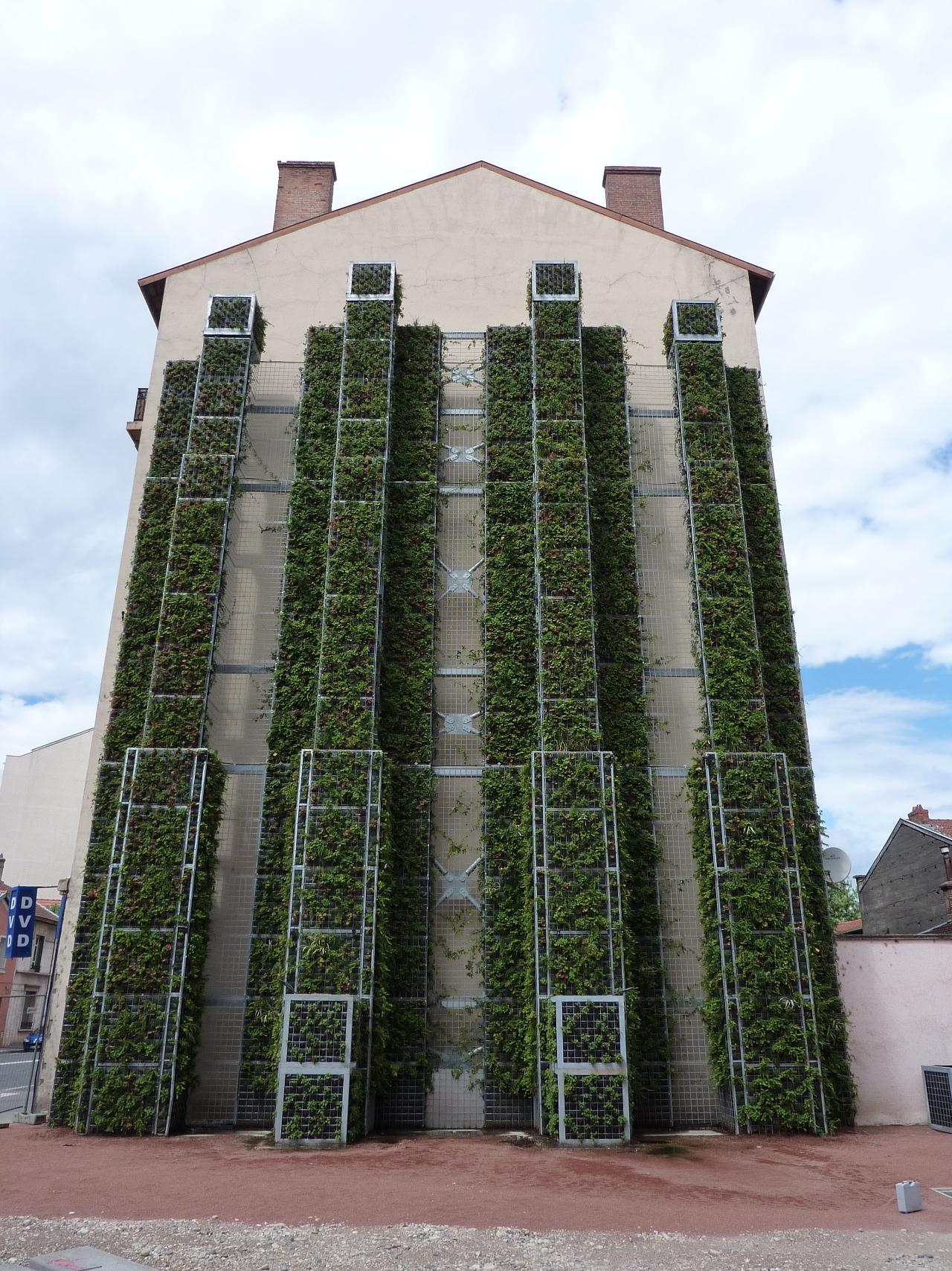 Mur Végétal Extérieur Palette murs végétal | arrosage goutte à goutte